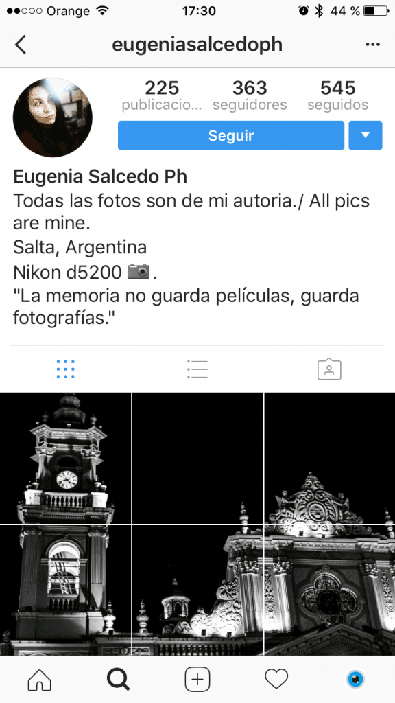 Mosaico del perfil de fotógrafa en Instagram